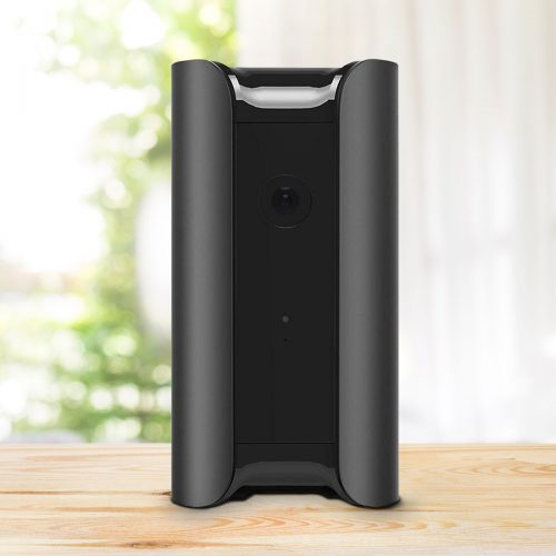 Canary IoT home security
