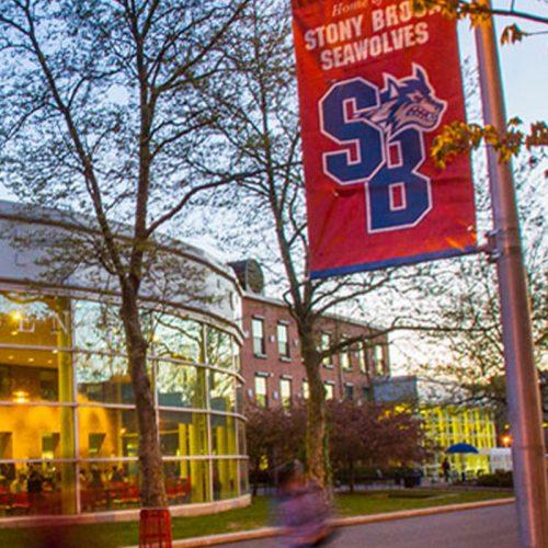 IPS Scholarship - Stony Brook University